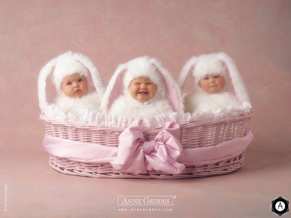 зайцы белые в корзине