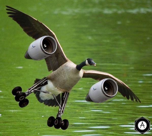 турбореактивная утка