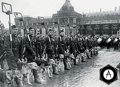 Парад Победы 1945 сапёры