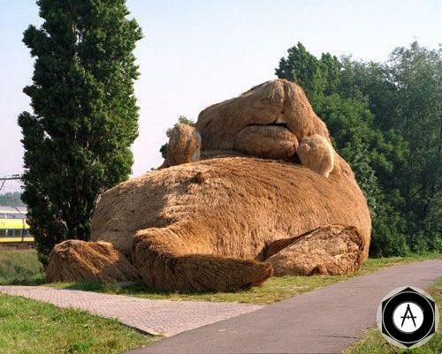 Бобруйск памятник сытому Бобру