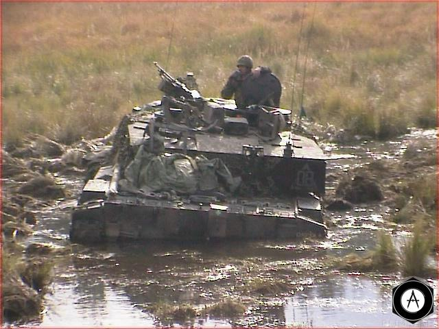Challenger в болоте