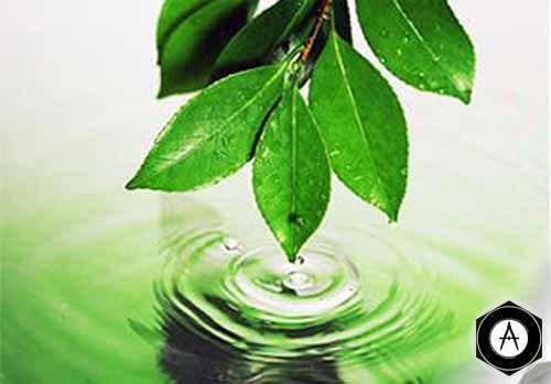 Предприятия Сибура снизили воздействие на окружающую среду