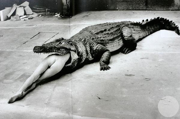 Лишение девственности Крокодил и балерина Балет Пины Баух Вупперталь