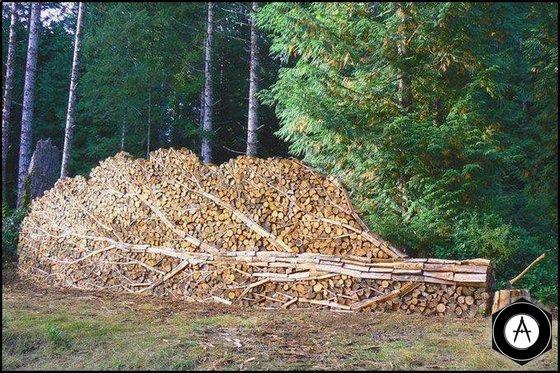 дровяное дерево